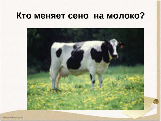 Кто меняет сено на молоко?