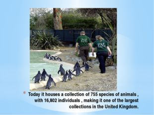 Today it houses a collection of 755 species of animals , with 16,802 individu