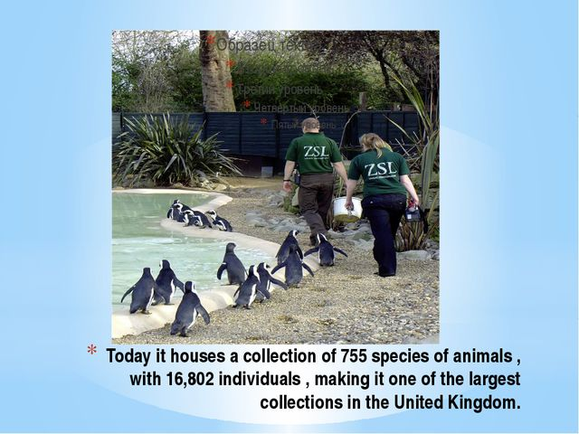Today it houses a collection of 755 species of animals , with 16,802 individu...