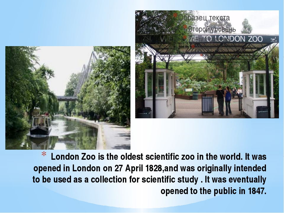 London Zoo is the oldest scientific zoo in the world. It was opened in London...