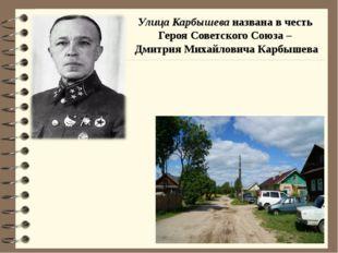 Улица Карбышева названа в честь Героя Советского Союза – Дмитрия Михайловича