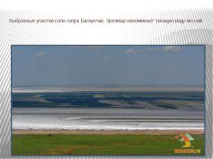Выбранные участки соли озера Баскунчак. Зрелище напоминает тающую воду весной.