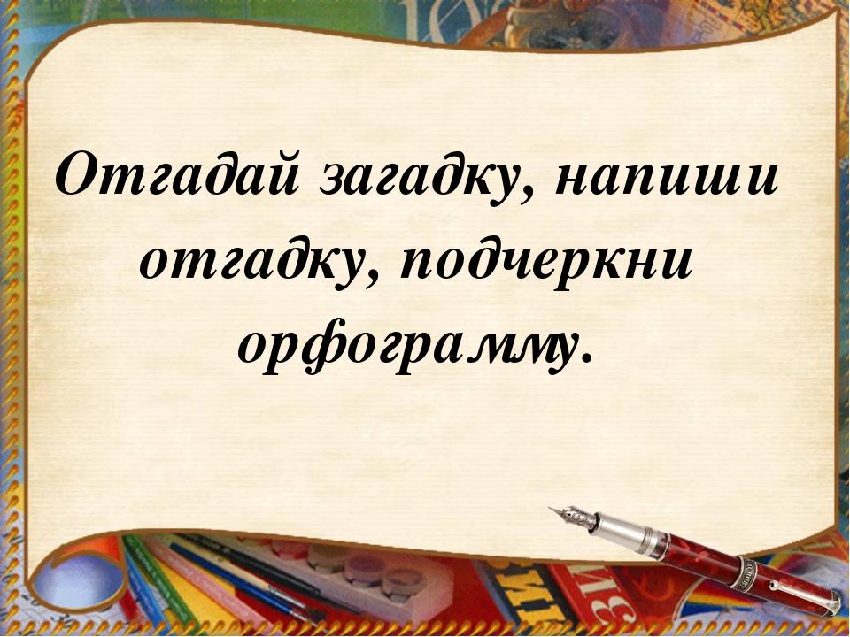 Отгадай загадку, напиши отгадку, подчеркни орфограмму.