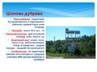 Расположение: территория Бутурлиновского и Павловского районов, правый берег