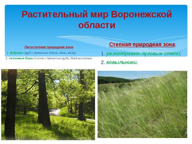 Растительный мир Воронежской области Лесостепная природная зона: 1. дубравы (...