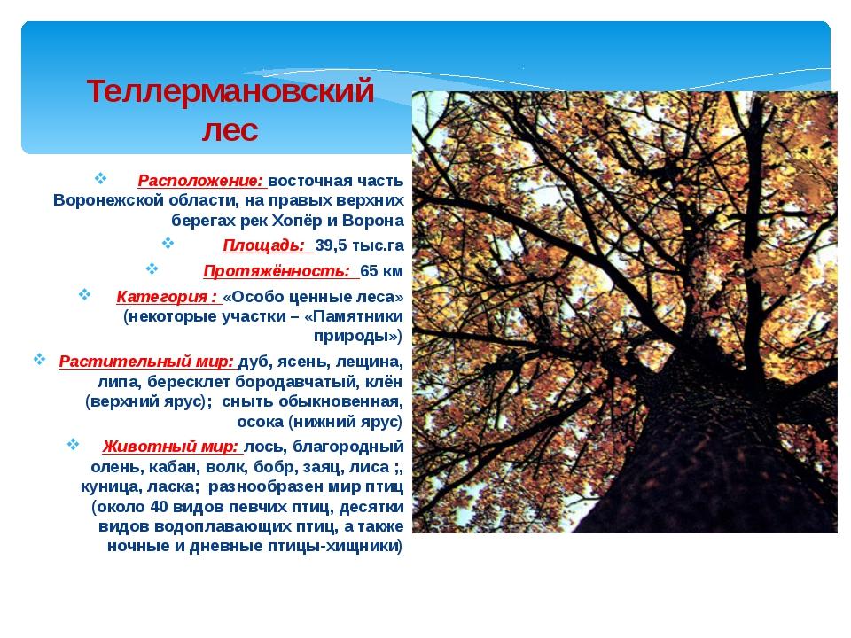 Расположение: восточная часть Воронежской области, на правых верхних берегах...