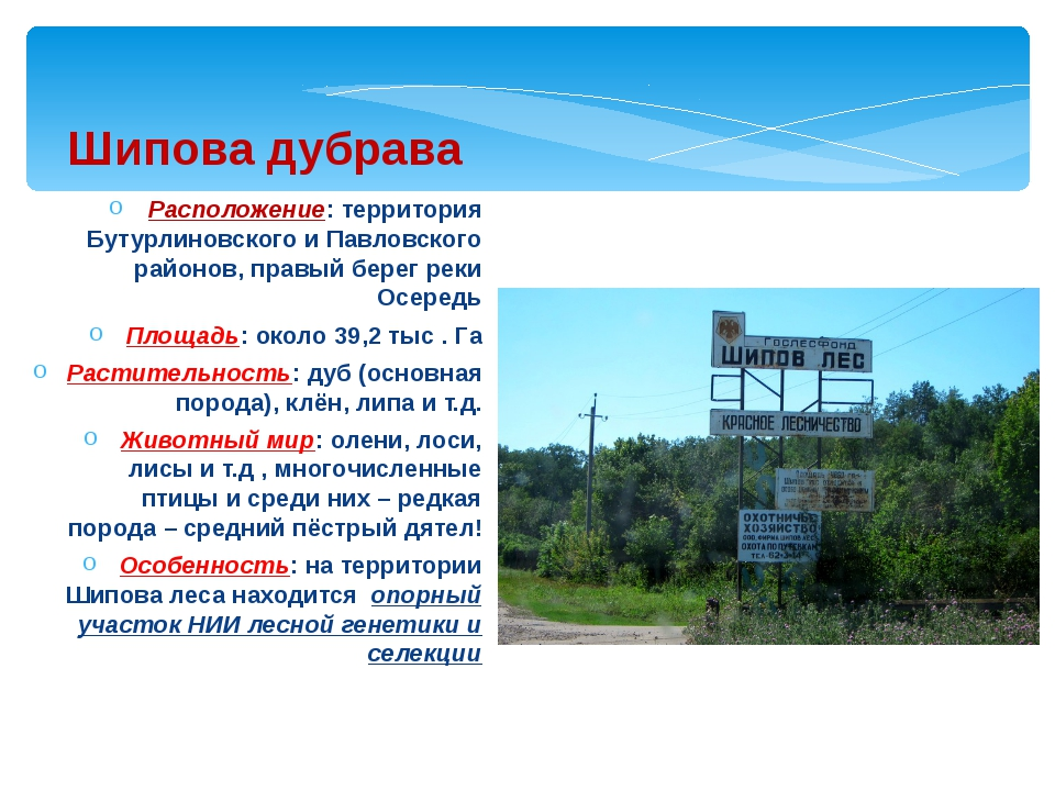 Расположение: территория Бутурлиновского и Павловского районов, правый берег...
