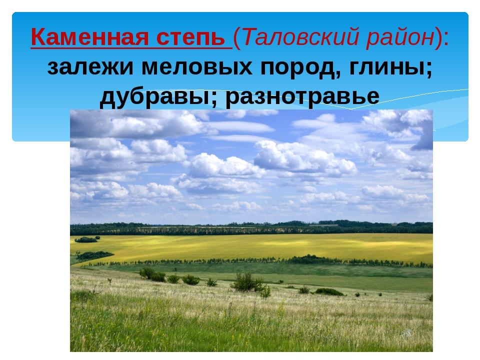 Каменная степь (Таловский район): залежи меловых пород, глины; дубравы; разно...