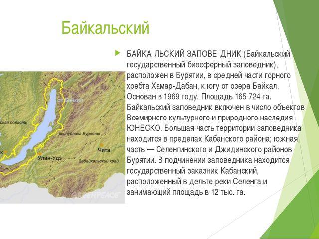 Байкальский БАЙКА́ЛЬСКИЙ ЗАПОВЕ́ДНИК (Байкальский государственный биосферный...