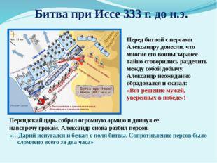 Персидский царь собрал огромную армию и двинул ее навстречу грекам. Александ