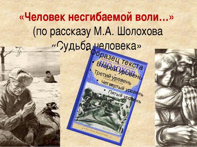 «Человек несгибаемой воли…» (по рассказу М.А. Шолохова «Судьба человека»