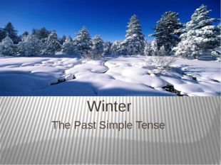 The Past Simple Tense Winter