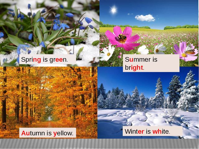ummer Spring is green. Summer is bright. Autumn is yellow. Winter is white.
