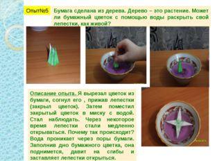 Опыт№5 Бумага сделана из дерева. Дерево – это растение. Может ли бумажный цве