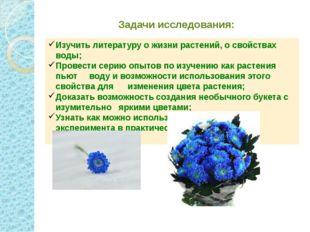 Задачи исследования: Изучить литературу о жизни растений, о свойствах воды; П