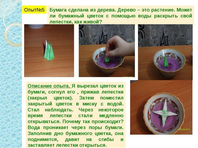 Опыт№5 Бумага сделана из дерева. Дерево – это растение. Может ли бумажный цве...