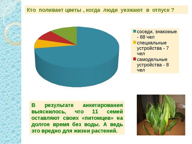 Кто поливает цветы , когда люди уезжают в отпуск ? В результате анкетирования...