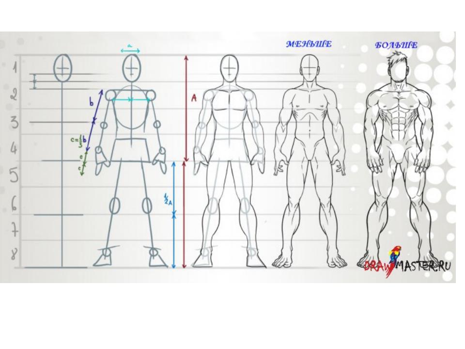 Как нарисовать человека мужчину поэтапно карандашом для