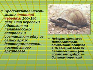 Продолжительность жизни слоновой черепахи 100–150 лет. Эти черепахи обитают н