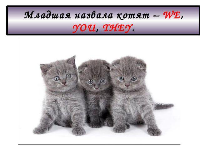 Младшая назвала котят – WE, YOU, THEY.