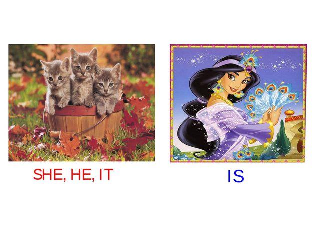 SHE, HE, IT IS