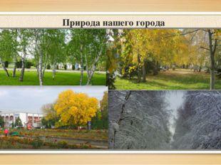 Природа нашего города