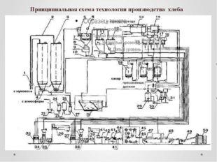 Принципиальная схема технологии производства хлеба