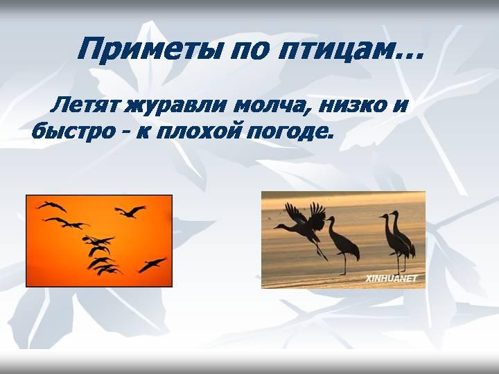 hello_html_306cd608.jpg