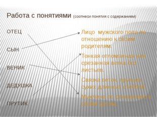 Работа с понятиями (соотнеси понятия с содержанием) ОТЕЦ СЫН ВЕНИК ДЕДУШКА ПР