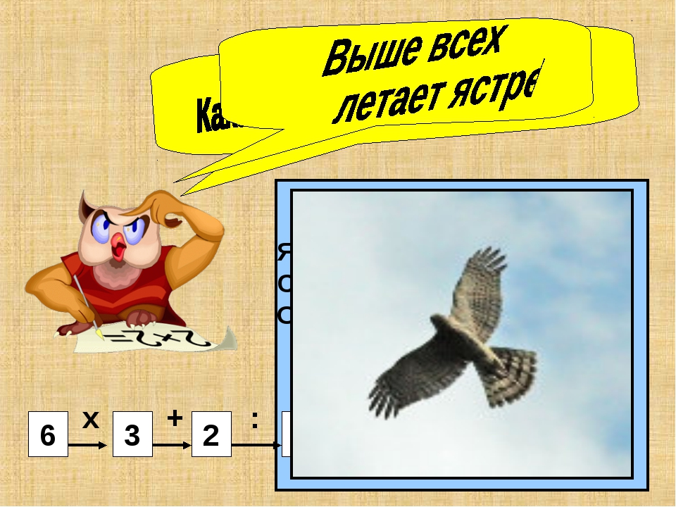 4 5 2 3 6 Ястреб – 4 Сокол – 3 Орёл - 7 х + : х + : 7 6