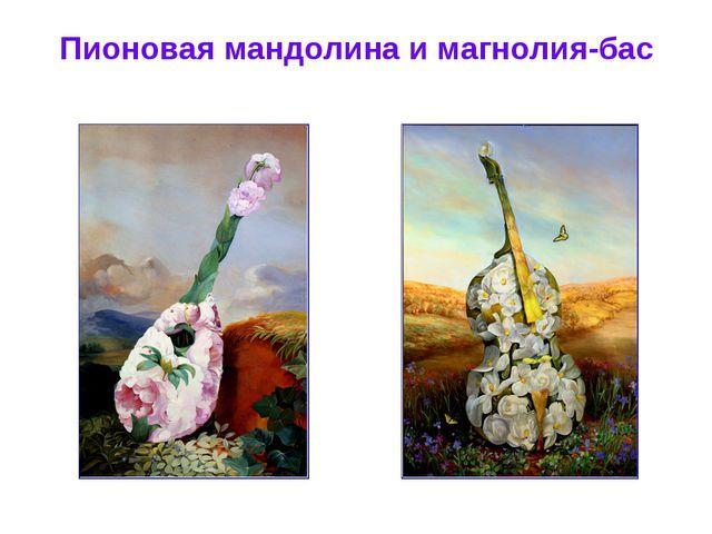 Пионовая мандолина и магнолия-бас