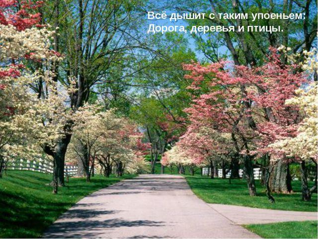 Всё дышит с таким упоеньем: Дорога, деревья и птицы.