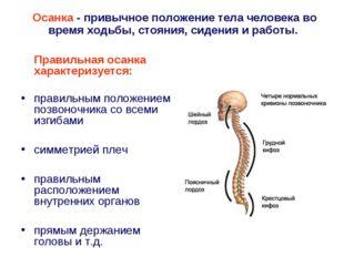 Правильная осанка характеризуется: правильным положением позвоночника со вс