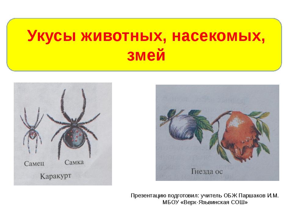 Укусы животных, насекомых, змей Презентацию подготовил: учитель ОБЖ Паршаков...