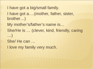 I have got a big/small family. I have got a….(mother, father, sister, brother