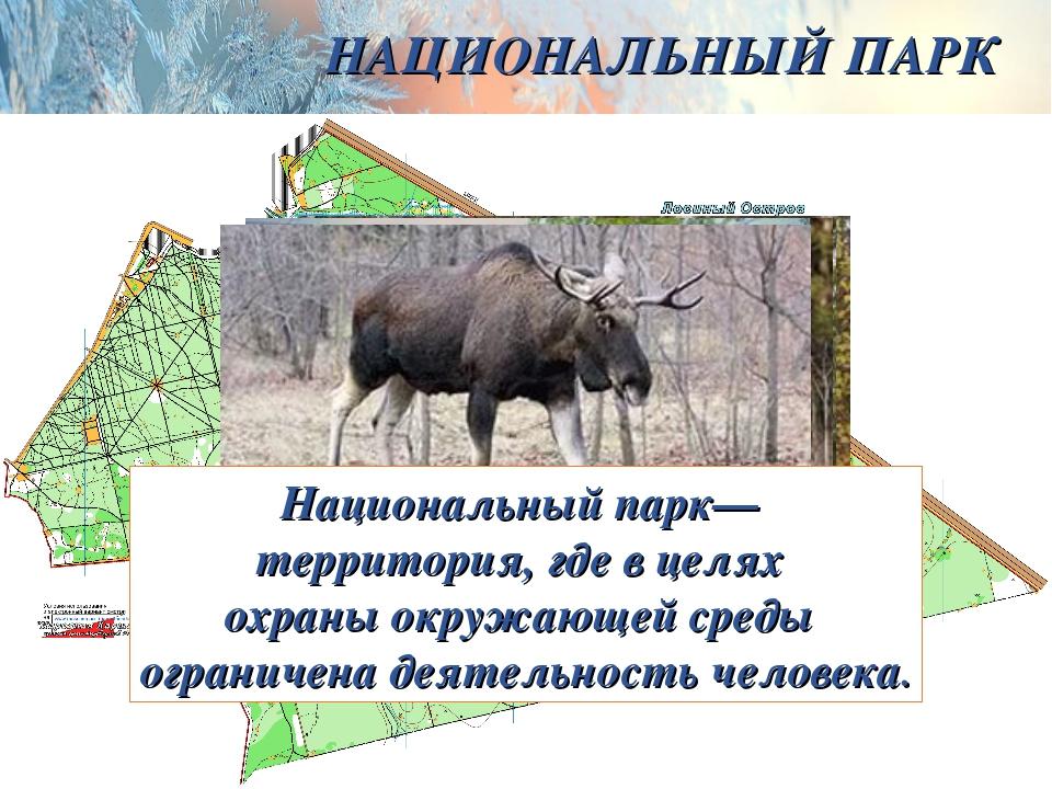 НАЦИОНАЛЬНЫЙ ПАРК Национальный парк— территория, где в целях охраны окружающе...