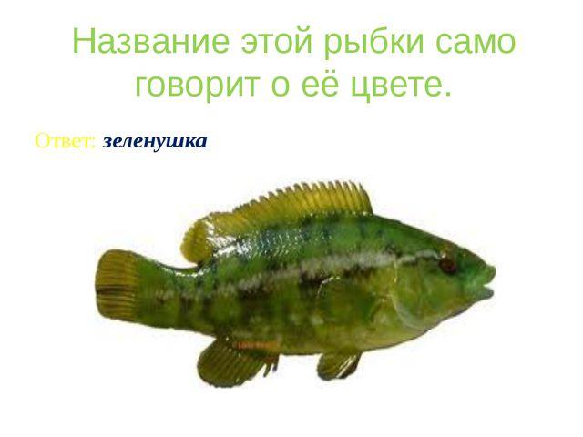 Название этой рыбки само говорит о её цвете. Ответ: зеленушка