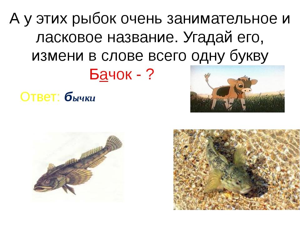 А у этих рыбок очень занимательное и ласковое название. Угадай его, измени в...
