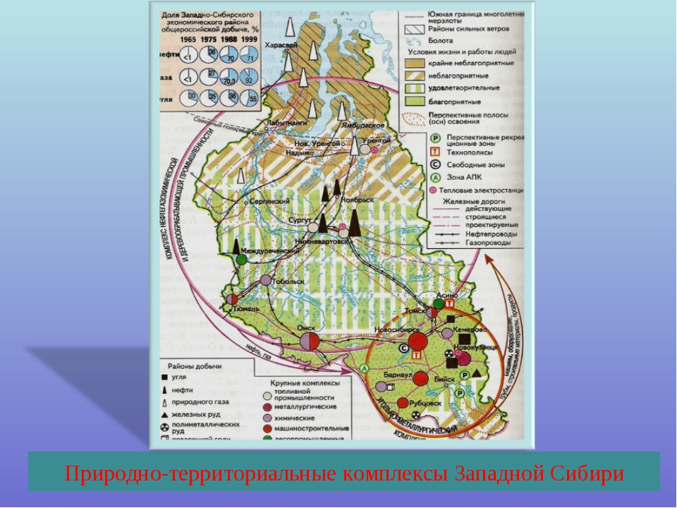 Природно-территориальные комплексы Западной Сибири