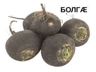 БОЛГÆ