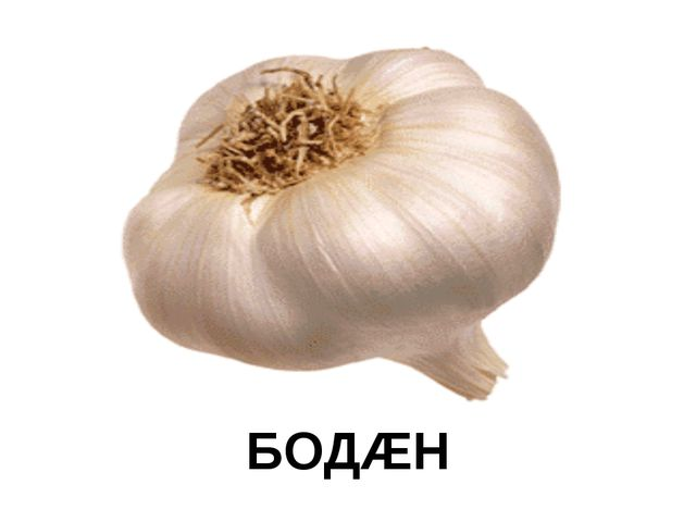 БОДÆН
