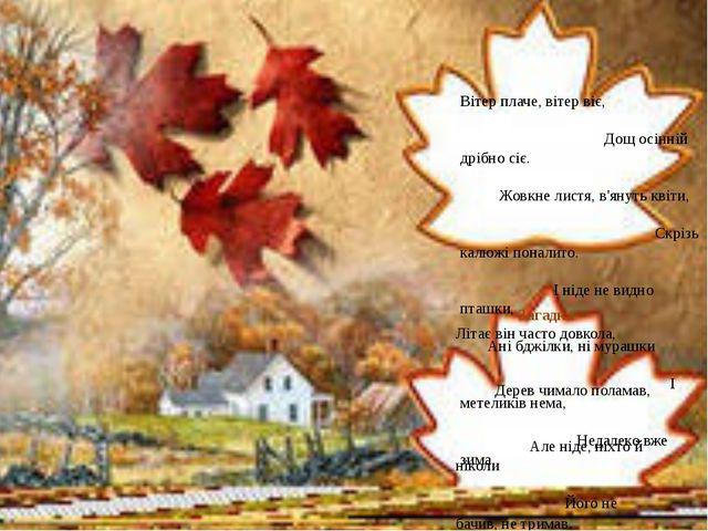 Вітер плаче, вітер віє, Дощ осінній дрібно сіє. Жовкне листя, в'януть квіти,...