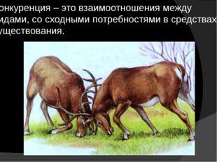 Конкуренция – это взаимоотношения между видами, со сходными потребностями в с