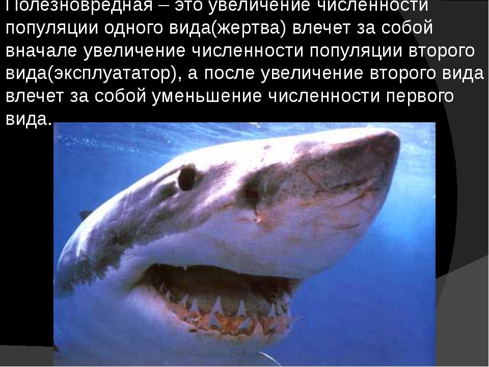 Полезновредная – это увеличение численности популяции одного вида(жертва) вле...