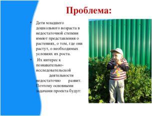 Проблема: Дети младшего дошкольного возраста в недостаточной степени имеют пр