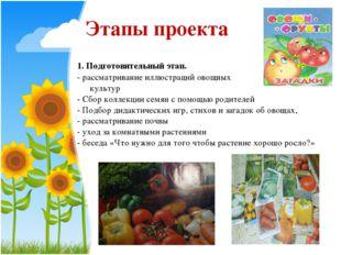1. Подготовительный этап. - рассматривание иллюстраций овощных культур - Сбо