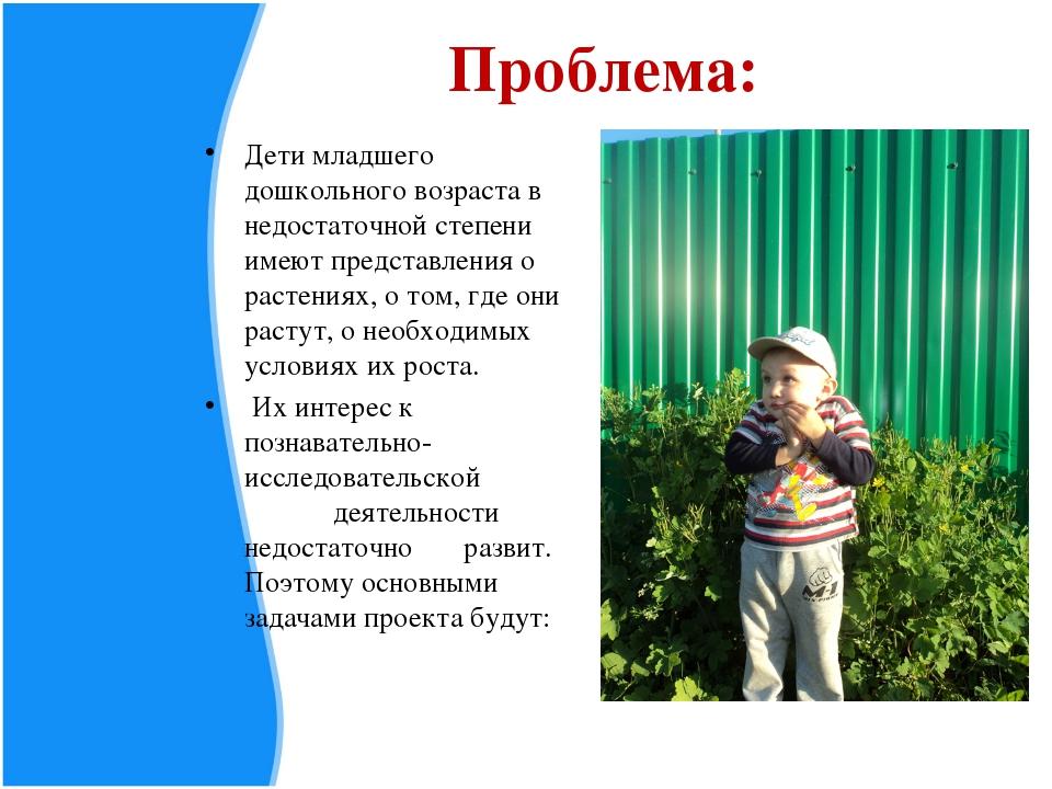 Проблема: Дети младшего дошкольного возраста в недостаточной степени имеют пр...