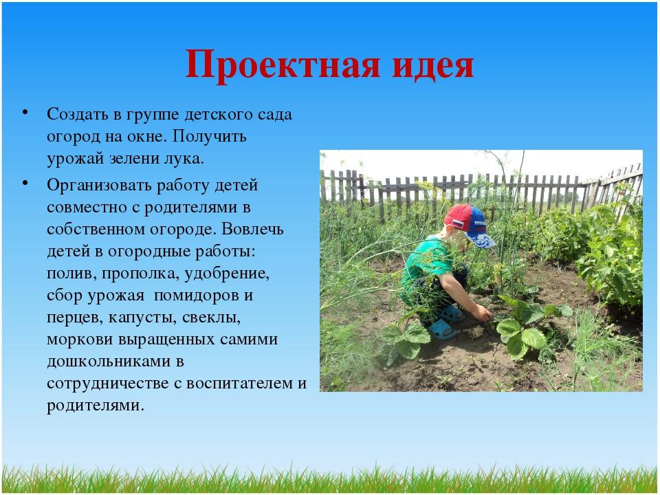 Проектная идея Создать в группе детского сада огород на окне. Получить урожай...