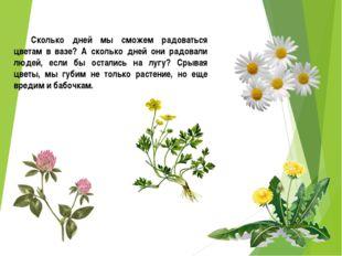 Сколько дней мы сможем радоваться цветам в вазе? А сколько дней они радовали