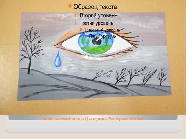 Экологический плакат Цыцаркина Екатерина 10 класс